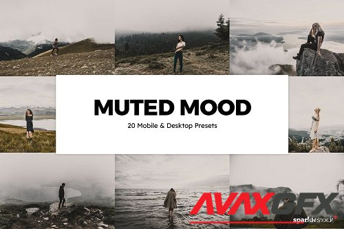 20 Muted Mood Lightroom Presets LUTs - 6131610
